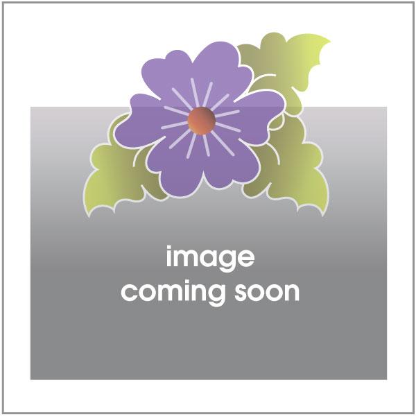 Flower - Purple Dotz - w/ letters - Applique