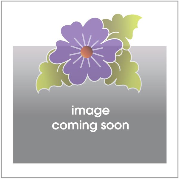 Crosshatch Rectangle - Block