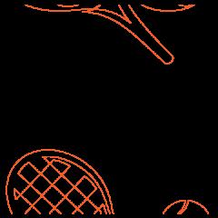 Ace - Pantograph
