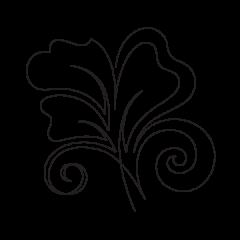 Angelica - Motif